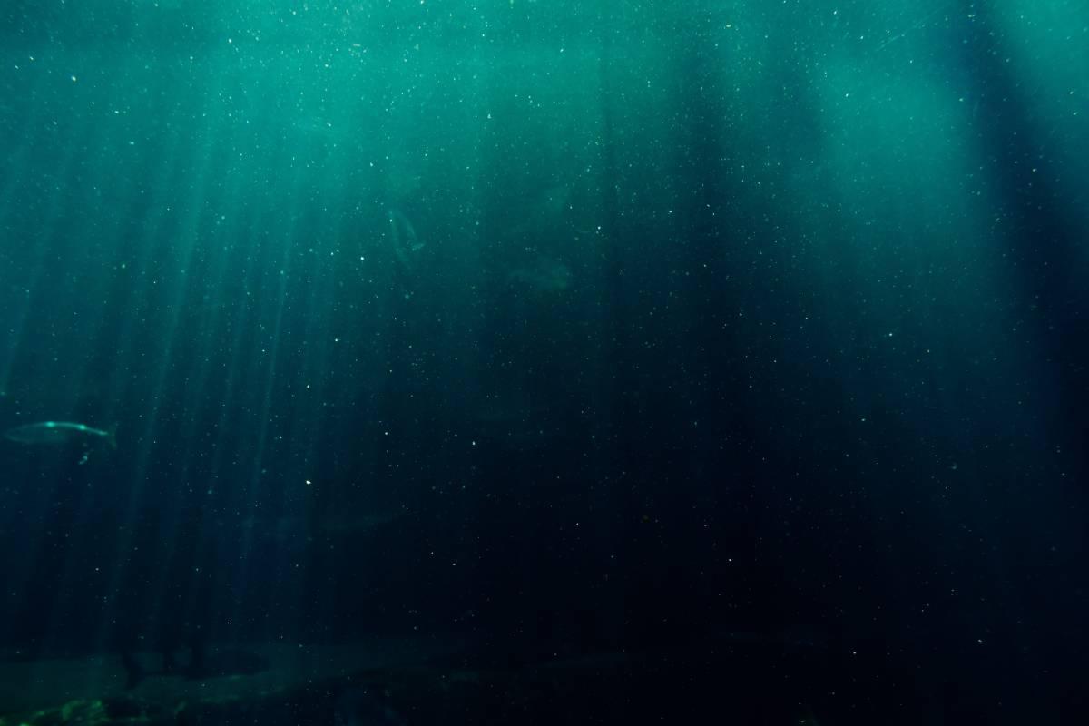 """Científicos encuentran un nuevo """"Chernobyl"""" en el fondo del mar de Noruega"""