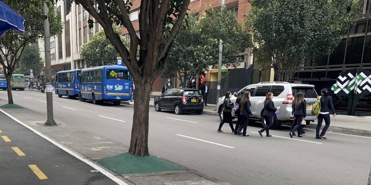 """Usuarios en redes critican el """"pasto falso"""" que se ha instalado en los árboles de Bogotá"""