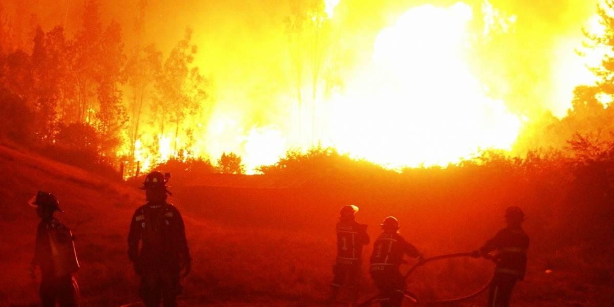 Cambio climático es uno de los factores clave en el aumento de incendios forestales
