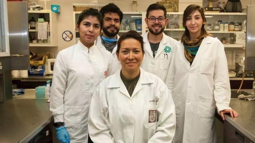 Mexico IPN VPH