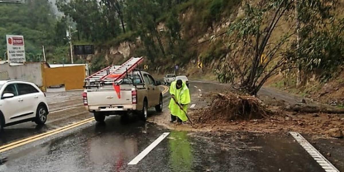 Quito: Avenida Interoceánica totalmente habilitada tras deslizamiento de tierra