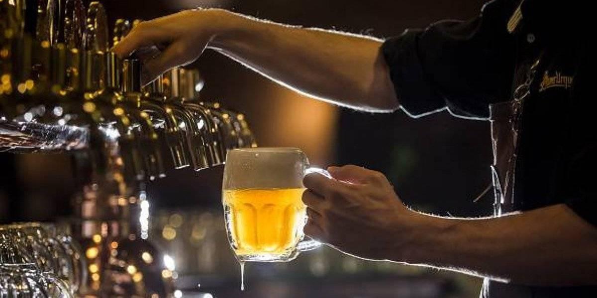 Secos para empinar el codo: venta de cerveza se acerca a los casi mil millones de litros anuales en Chile