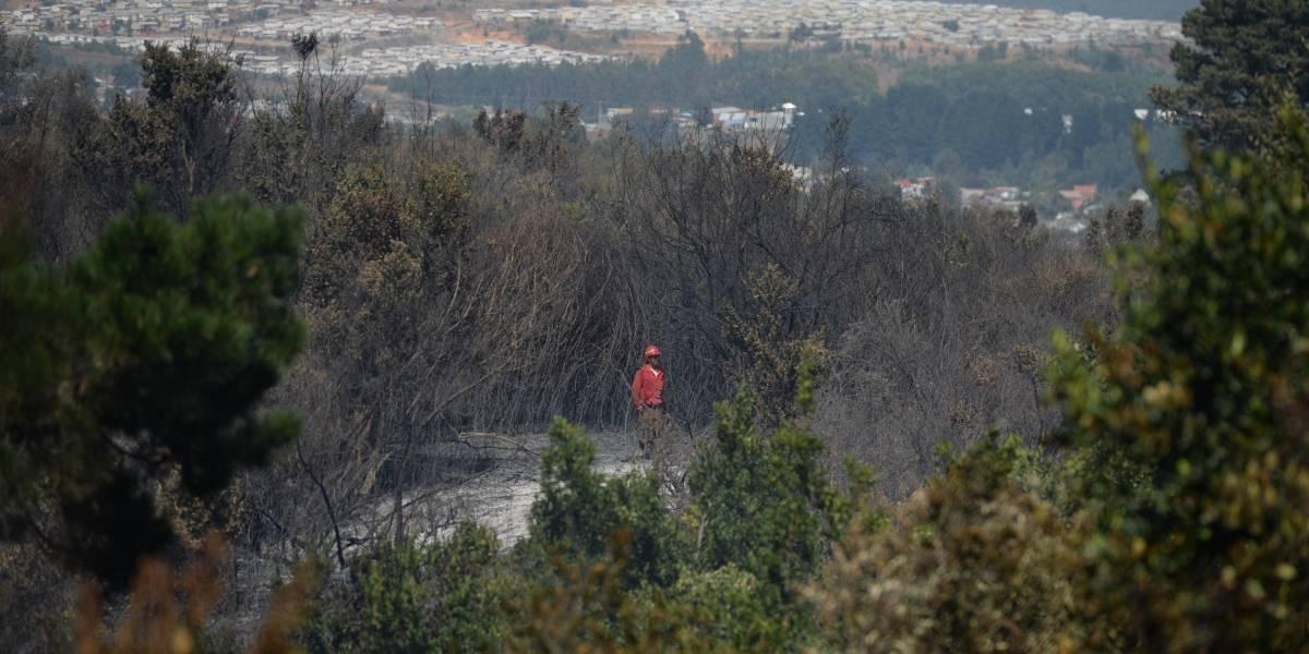 Tres trabajadores de empresa telefónica detenidos por causar incendio en Ñuble