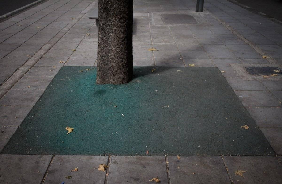 Crece la polémica por el recubrimiento instalado en los árboles