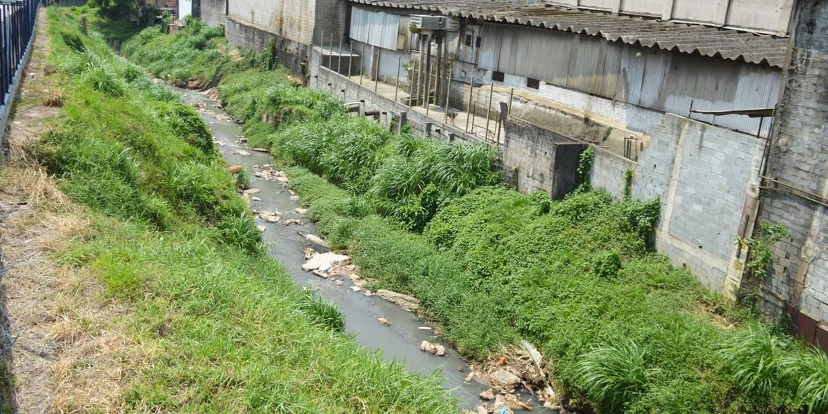 Chuva faz dois córregos transbordarem na capital paulista