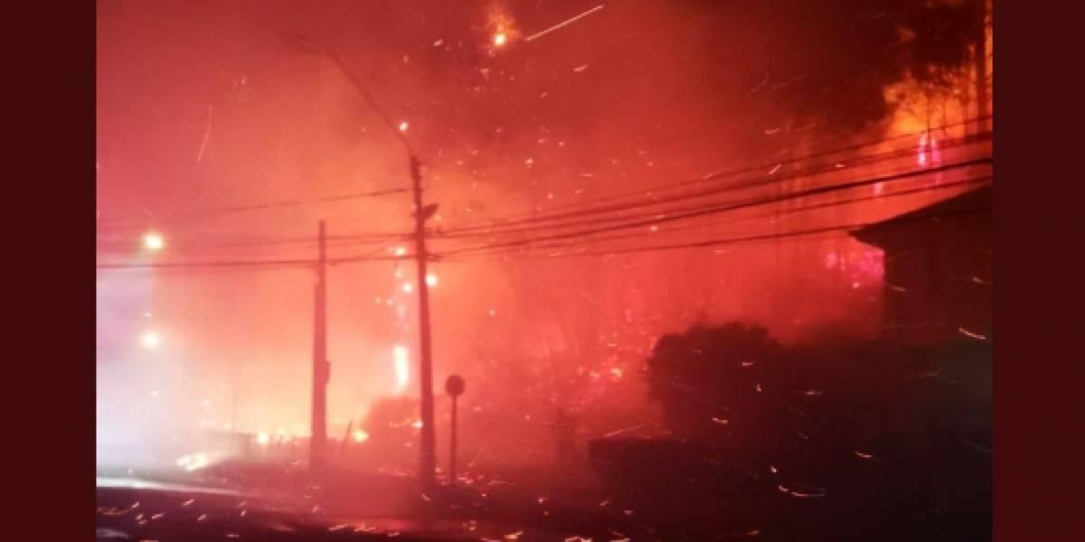 Incendios forestales simultáneos afectan a región del Biobío: evacúan Villa Italia en Penco y decretan alerta amarilla en provincia de Concepción