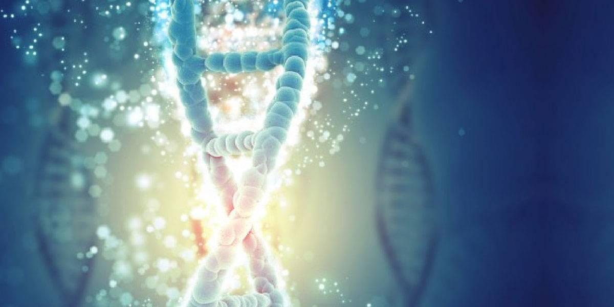 Científicos descubren que la orientación sexual está definida por diferentes regiones del genoma