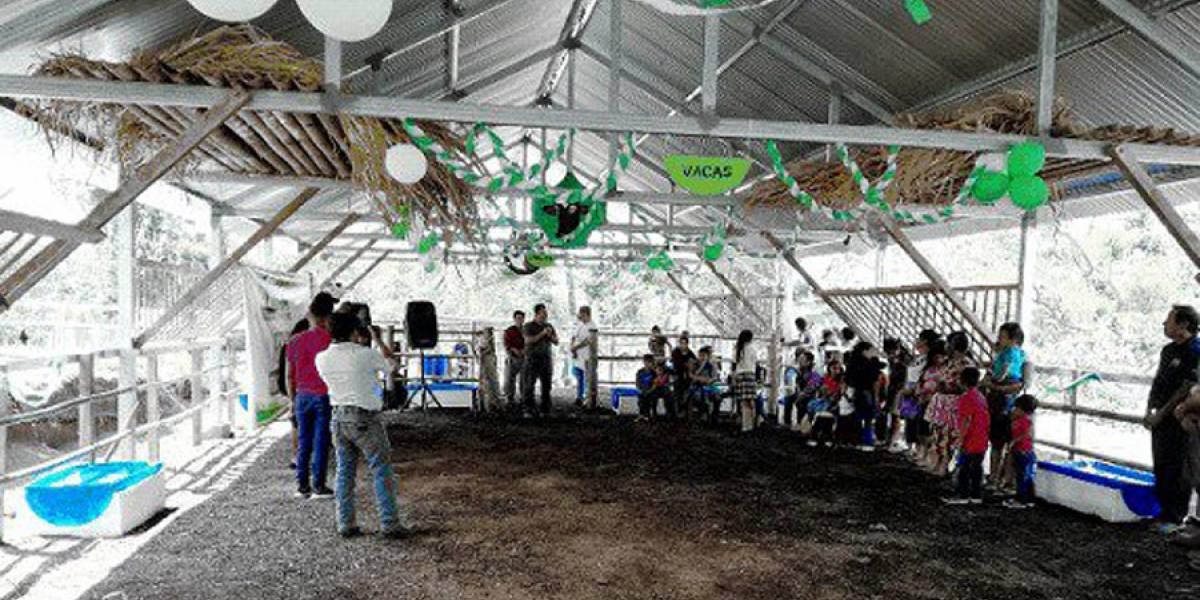 Conred habilita albergue para protección de animales durante una erupción