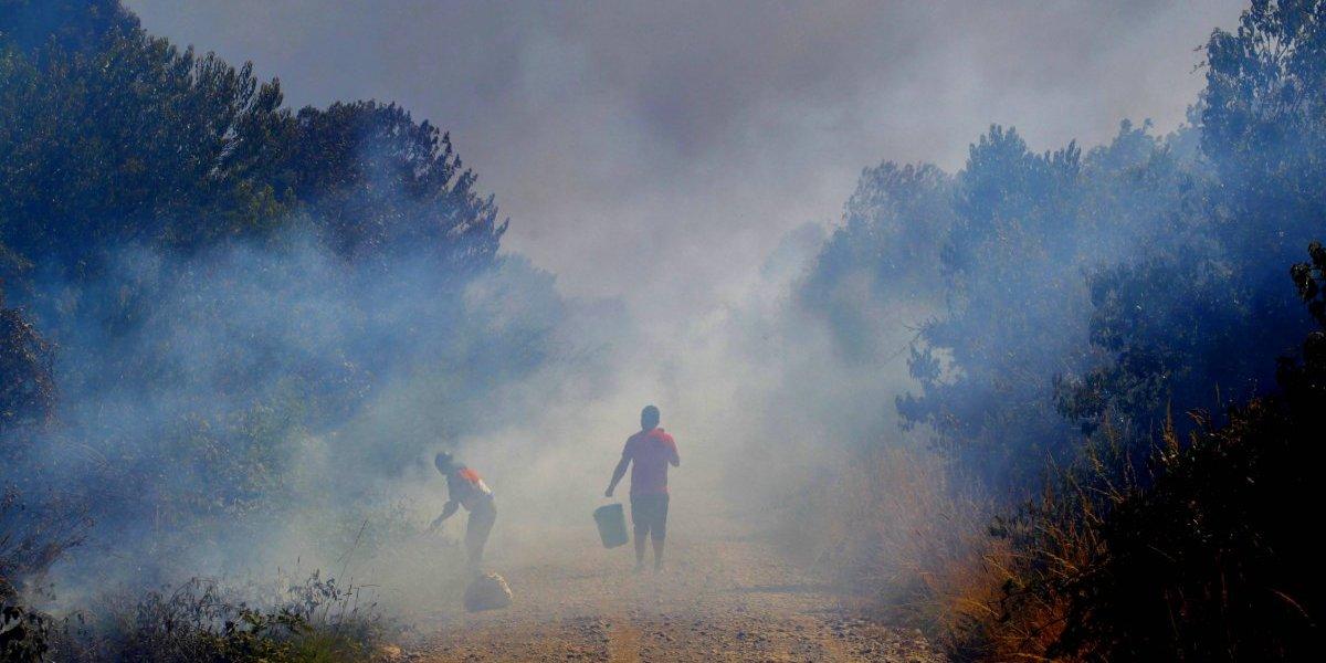El sur en llamas: ocho alertas rojas y 28 incendios forestales se mantienen activos en el país