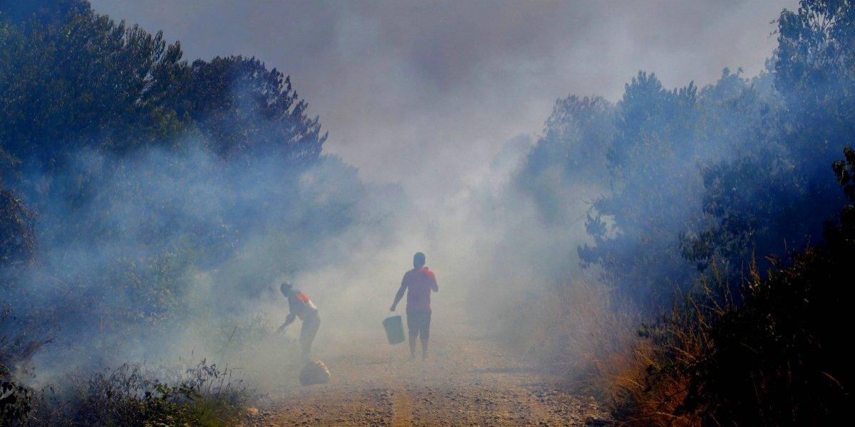¿Alerta pirómana? 97 personas han sido condenadas en Chile por incendiar bosques en los últimos cinco años