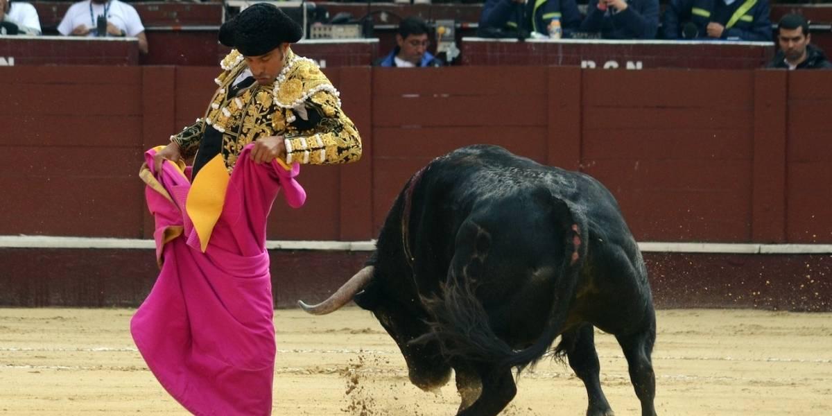 Por esta razón la Personería de Bogotá pide suspender la temporada taurina