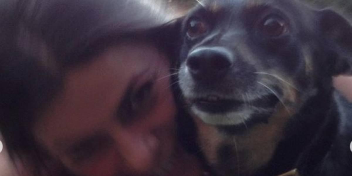 """La gran pena de Tonka Tomicic: Falleció su perrita """"Benedicta"""""""