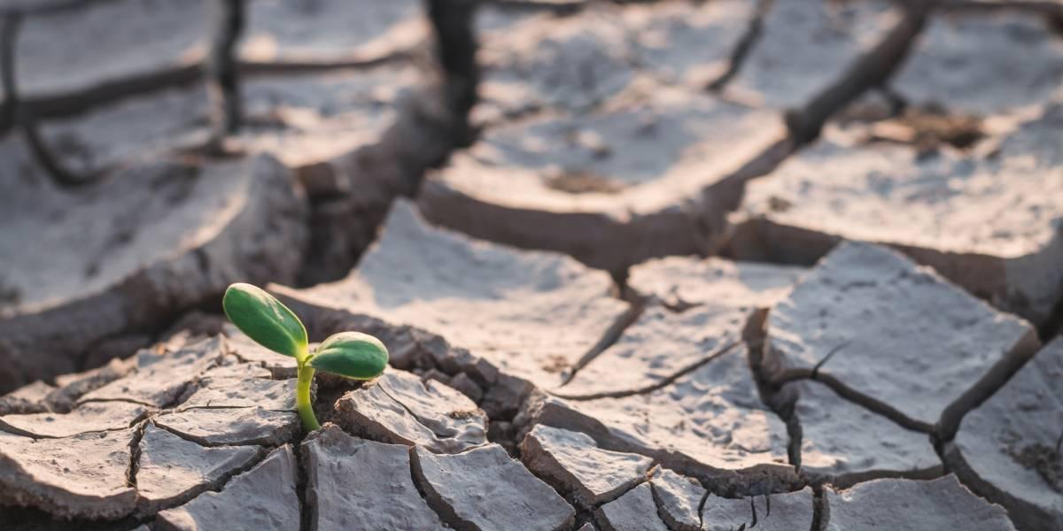Cosas que debes saber sobre la década más cálida de la historia