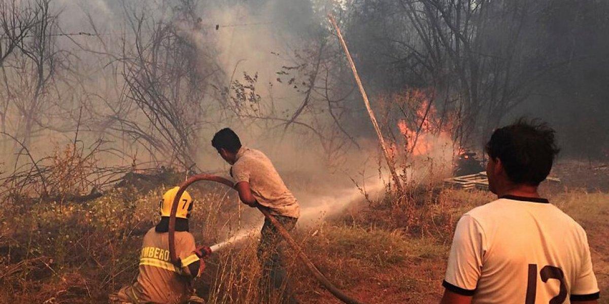 """Las llamas amenazan zonas habitadas: Onemi declaró """"alerta roja"""" en Chillán y Coelemu"""
