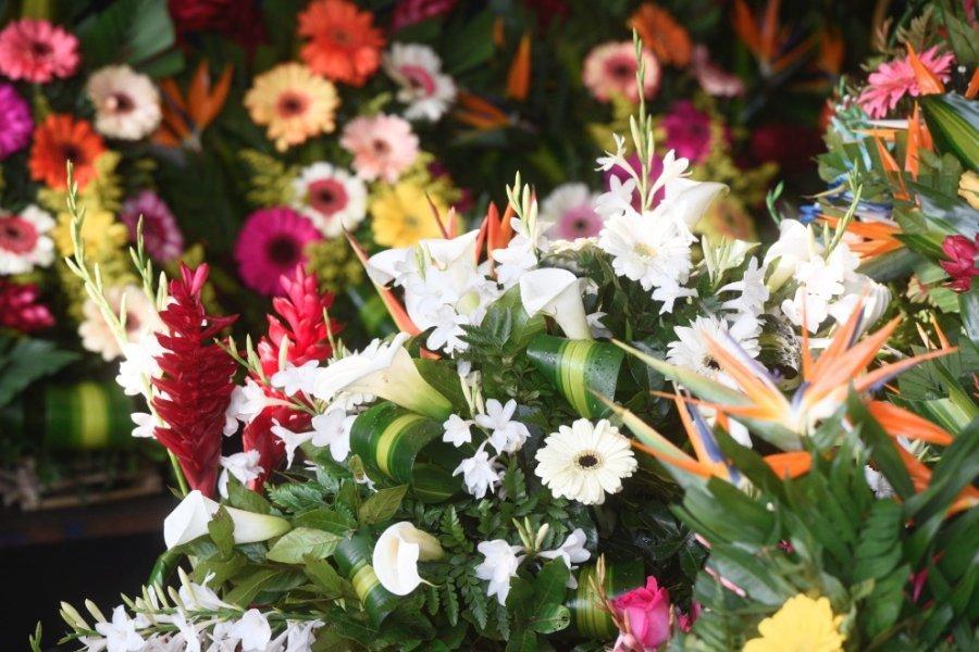 Fotos Flores Y Arreglos Para Este Día Del Cariño Publinews