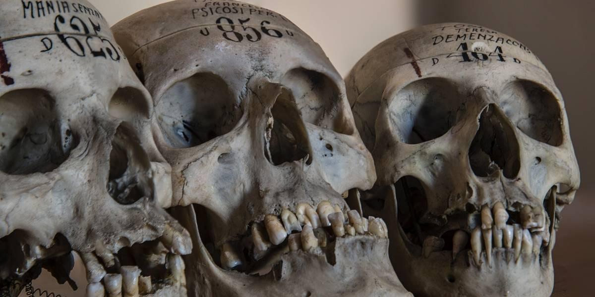 Encuentran una maleta llena de huesos humanos envueltos en papel de periódico