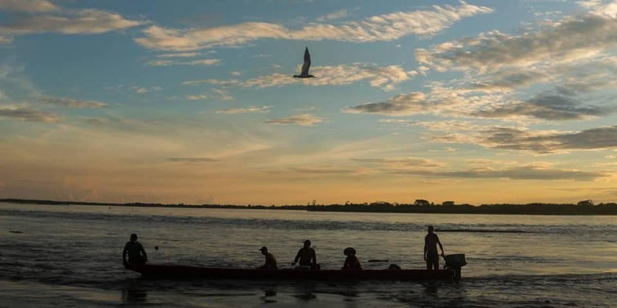 Ríos Vivos Colombia, el movimiento detrás de la defensa del río Cauca