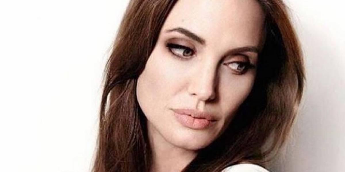Aseguran que Angelina Jolie podría difundir un video de Brad Pitt borracho para ganar la custodia de sus hijos