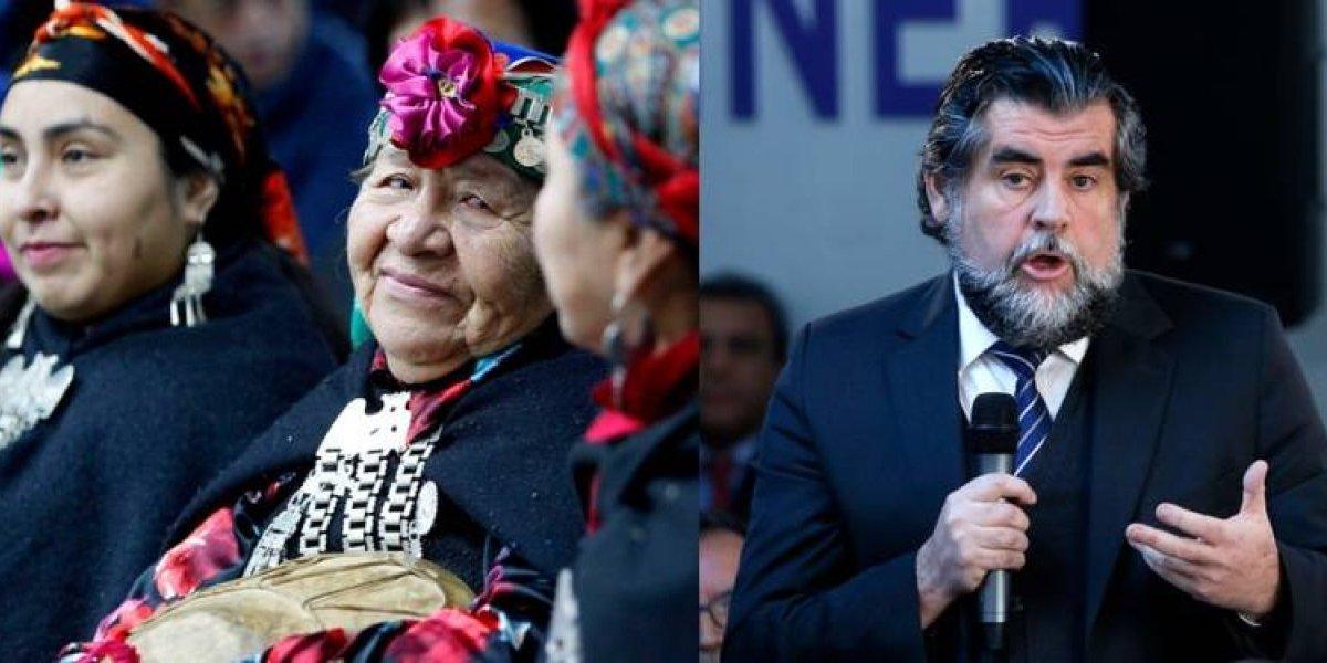 Mundo político condena a Rodrigo Ubilla tras vincular la causa mapuche con los incendios forestales en el sur