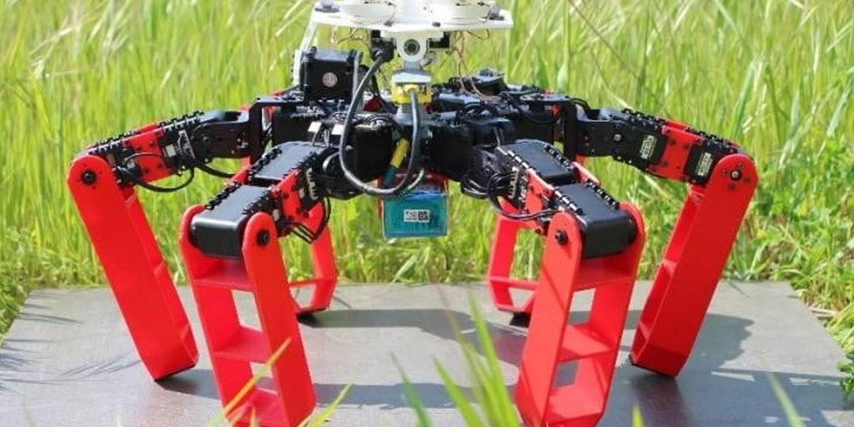 Este robot araña imita a las hormigas y por eso no requiere un GPS