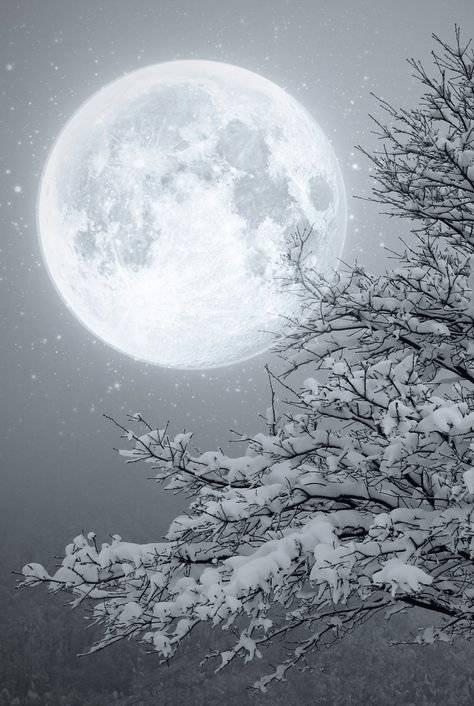 Luna llena febrero 2019