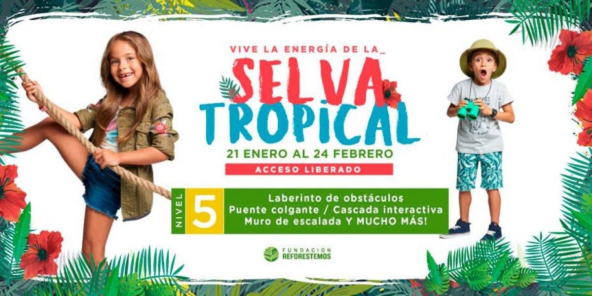 ¡Una Selva Tropical se toma el Mall Costanera Center!