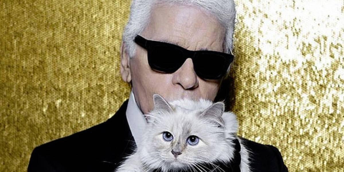 Karl Lagerfeld dejó toda su fortuna a su gato Choupette
