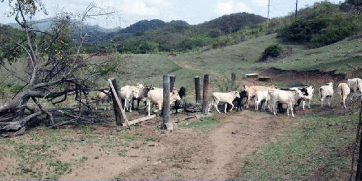 Instan a agricultores a prepararse para sequía y tormentas extremas