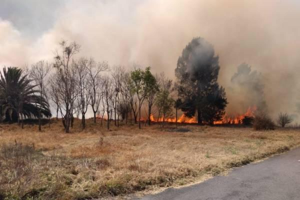 Resultado de imagen para incendio cdmx