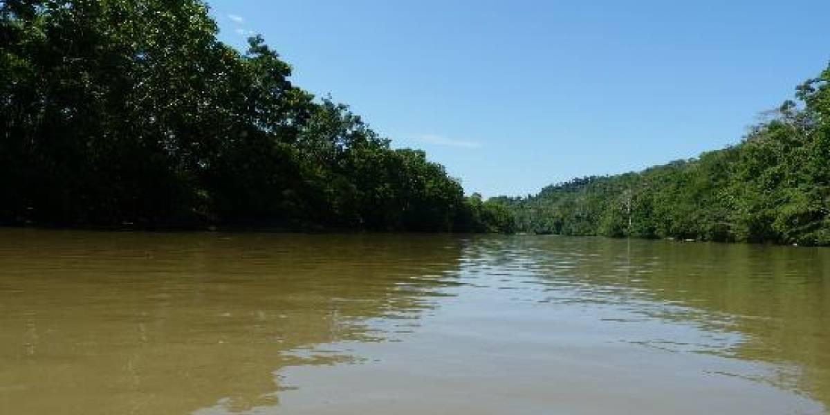 Un militar ecuatoriano murió durante entrenamiento en la Amazonía