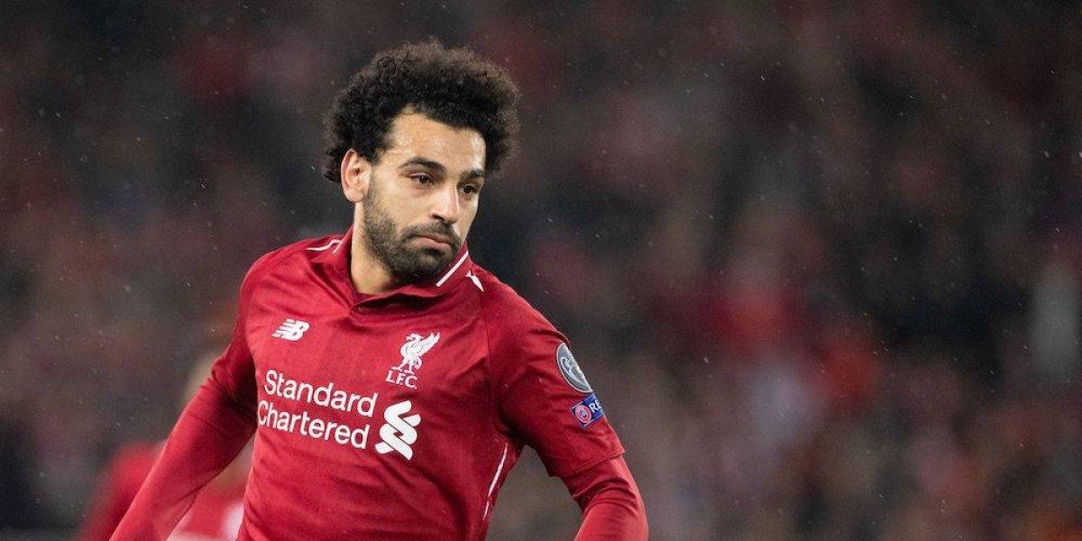 Nombran hormiga en honor a Mohamed Salah