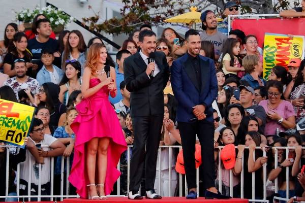 Gala de Viña 2019