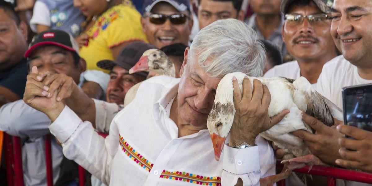 Pelear no deja nada, afirma López Obrador y llama a trabajar por México