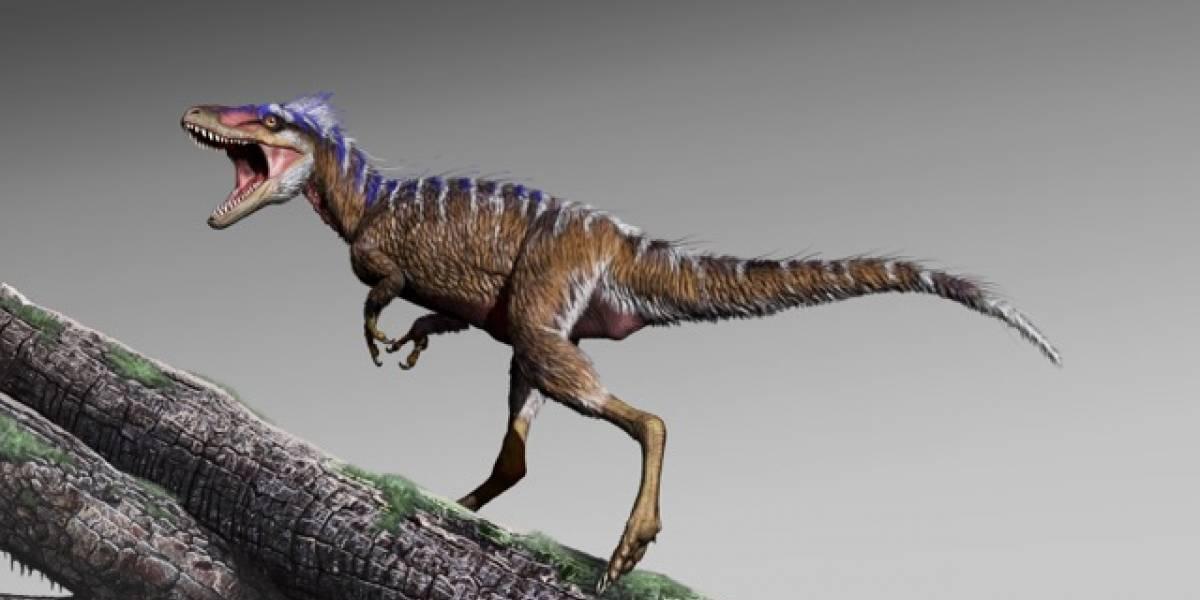 Un diminuto tiranosaurio acaba de ser descubierto: fue tan ligero que llegó a pesar solo 90 kilos