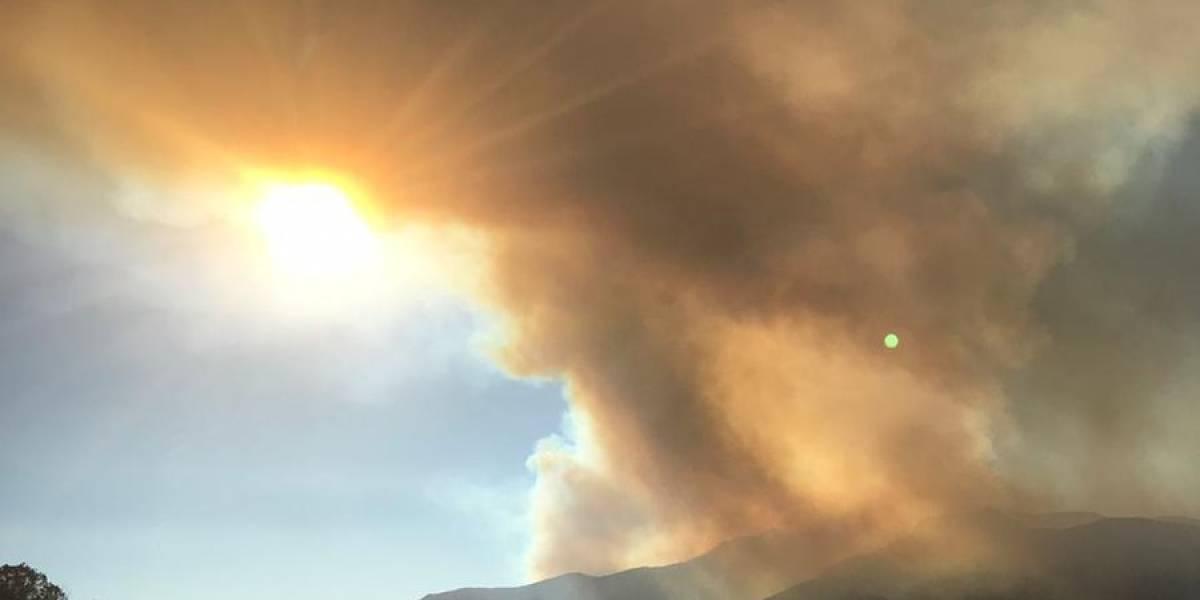 Incendio forestal afecta a cerro en comuna de Pudahuel