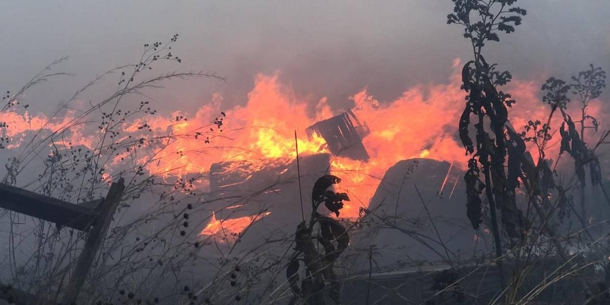 Conred registra 521 incendios forestales durante la temporada de siniestros