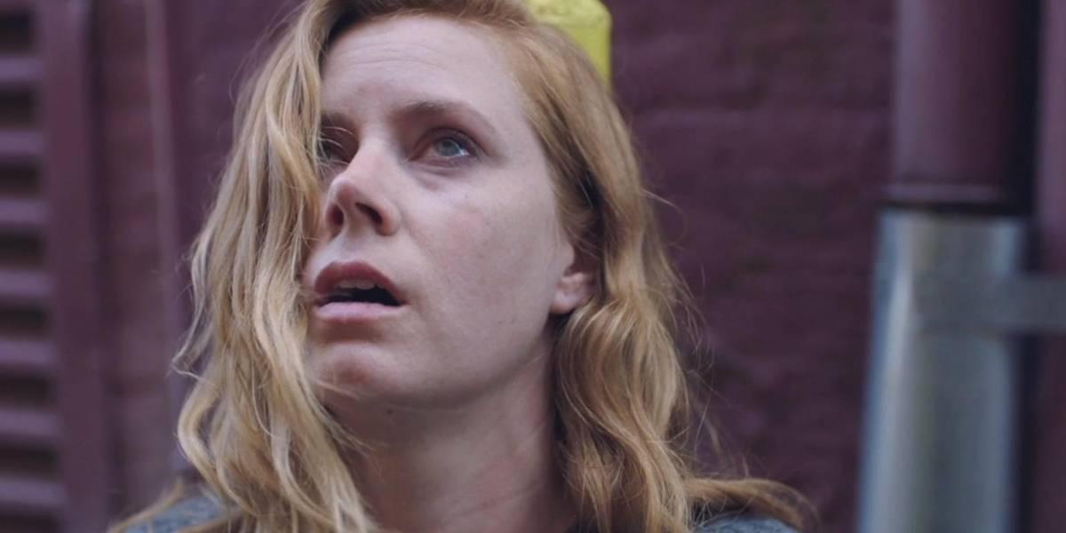 Amy Adams perde Oscar mais uma vez e fãs não perdoam Academia; veja reações