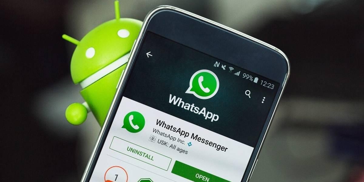 Ahora podrás ver de forma mucho más clara el uso de datos en WhatsApp