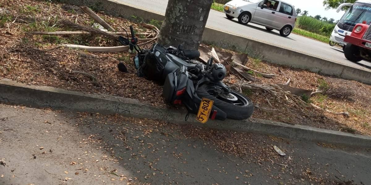 ¡Atención! Árbol se cayó y mató a dos motociclistas