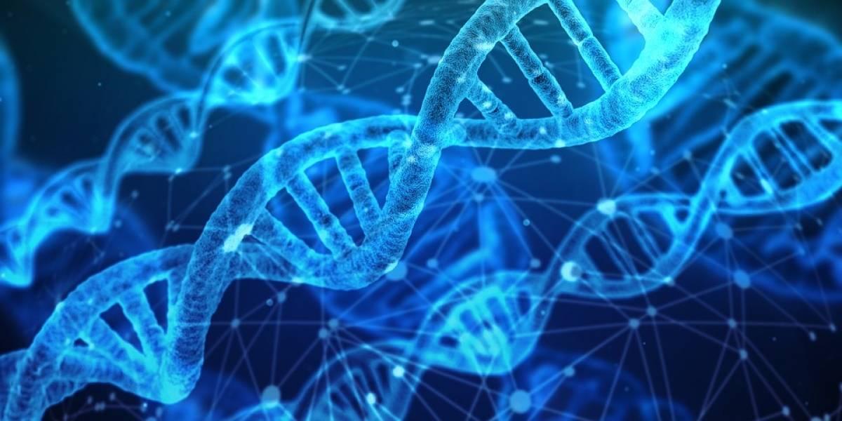 Científicos crearon 'Hachimoji', la versión duplicada de la estructura del ADN