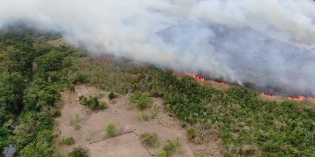 Se registra incendio forestal cerca del Parque Ceremonial Tibes en Ponce