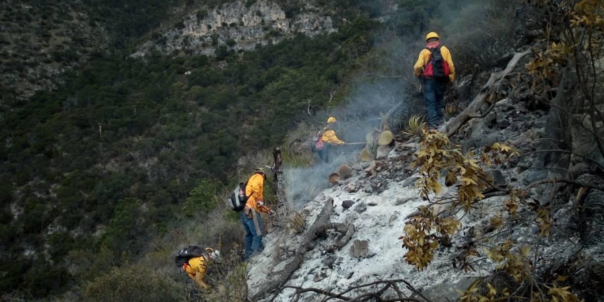 Controlan al 95% incendio forestal en Arteaga, Coahuila