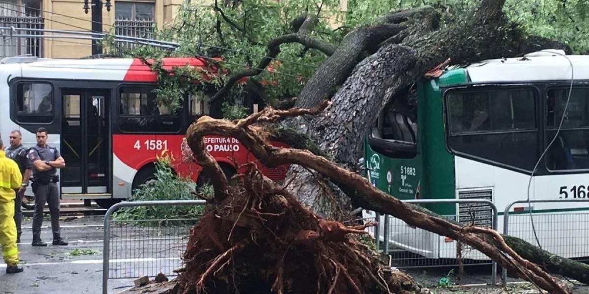 Moradores de diversos bairros de São Paulo reclamam de falta de energia