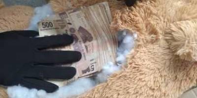 Dinero oculto en oso de peluche
