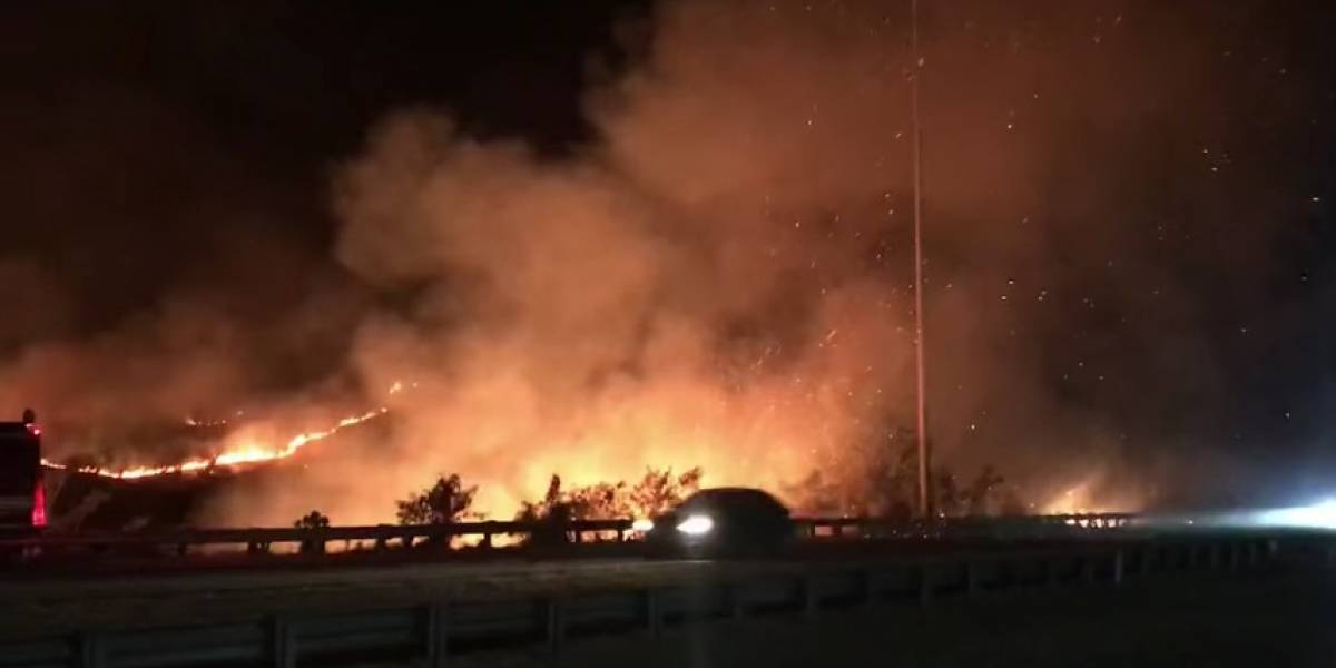 Reportan fuego forestal en Salinas