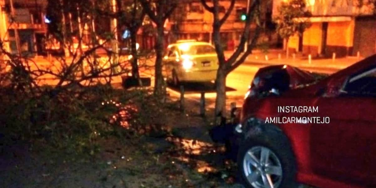 Conductor de vehículo se descontrola e impacta contra árbol en zona 1