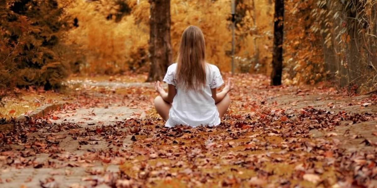 Impermanência: mindfulness para lidar com transformações