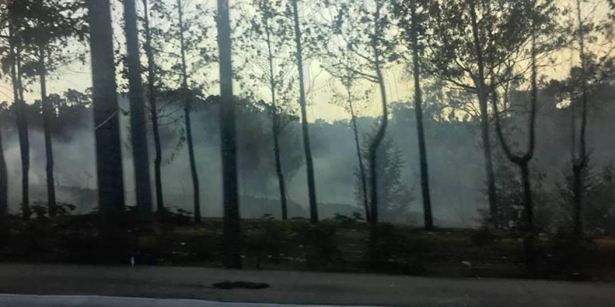VIDEO. Bomberos combaten incendio forestal en la zona 15 de la capital