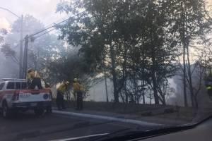 Bomberos Voluntarios apagan incendio forestal en Vista Hermosa.