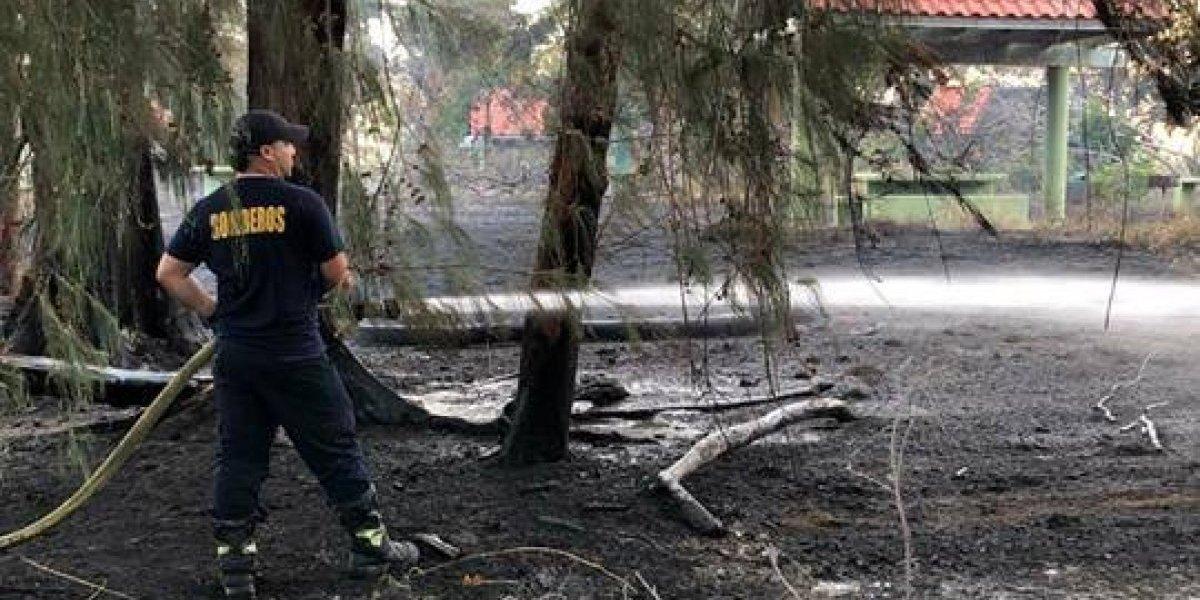 Sospechan que fuego cerca de Paseo Lineal en Ponce tuvo mano criminal